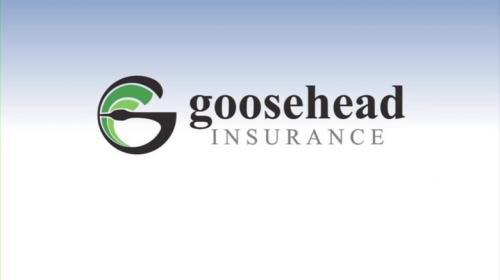 Goosehead Insurance Trisha Lynn Agency