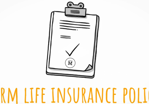 What's Term Life Insurance?